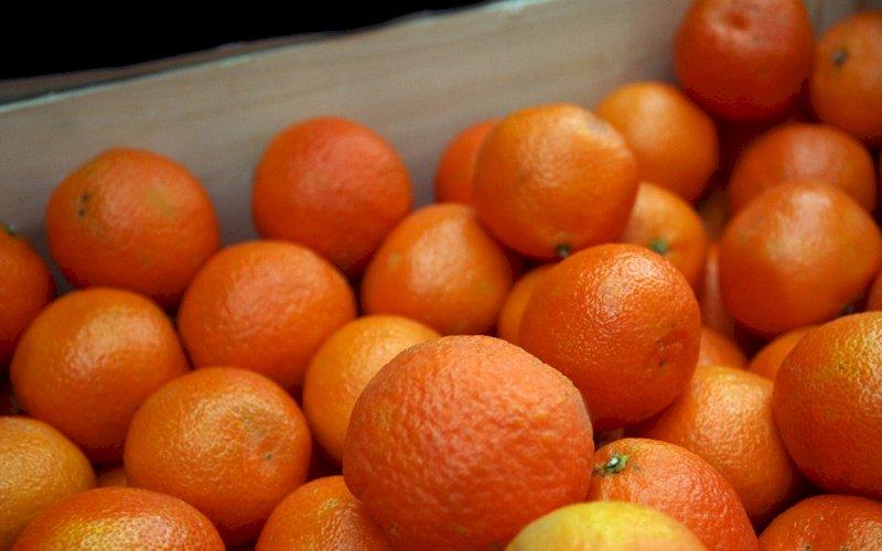 Mandarinning foydasi va zarari ma`lum qilindi